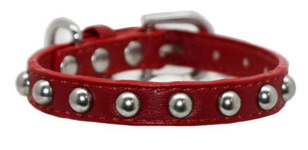 Picture of Red Stud Collar.