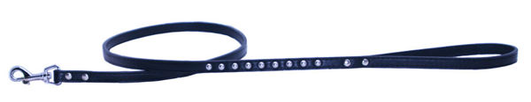 Picture of Black Silver Stud Matching Leash.