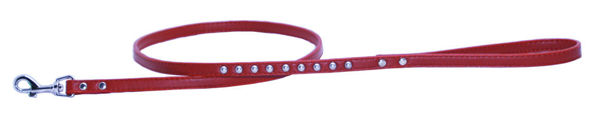 Picture of Red Silver Stud Matching Leash.
