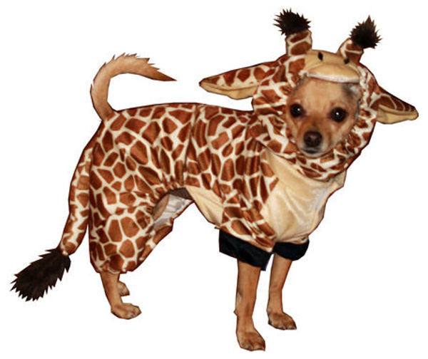 Picture of Giraffe Costume.