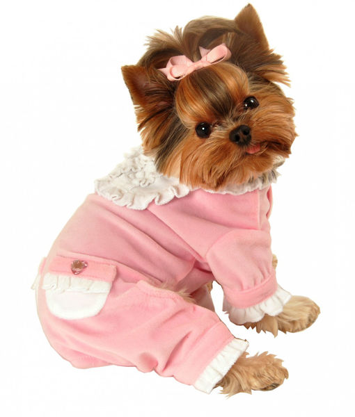 Picture of Pink Sweety Jumper.