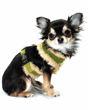 Picture of Olive Fur Star Harness Vest.