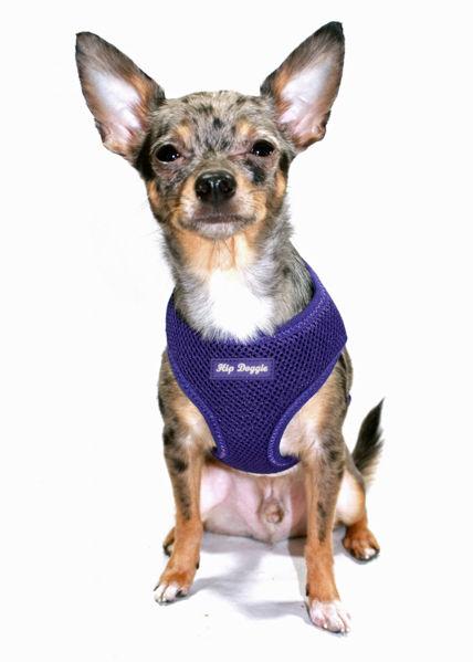 Picture of Ultra Comfort Purple Mesh Harness Vest.