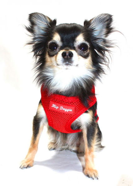 Picture of Ultra Comfort Red Mesh Harness Vest.