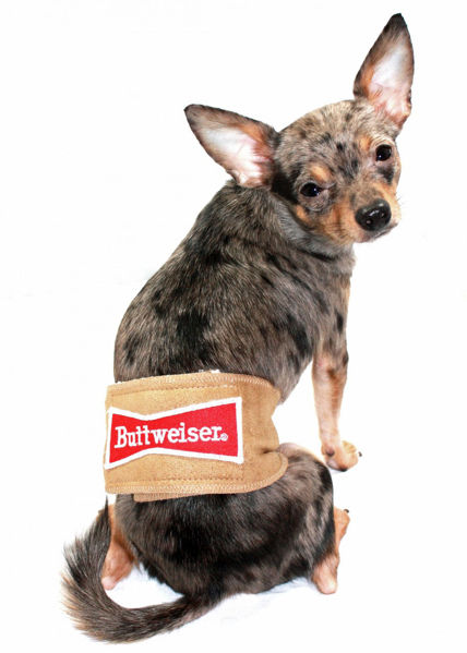 """Picture of Tan """"Buttweiser"""" Belly Band."""