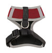 Picture of San Francisco 49ers Dog Harness Vest.