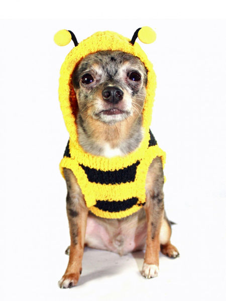 Picture of Bumble Bee Chenille Hoodie
