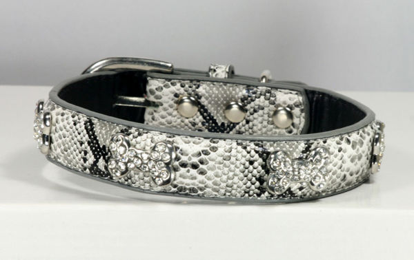 Picture of Crystal Bone Charm Collar - White.
