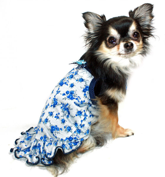 Picture of Blue Rose Dress