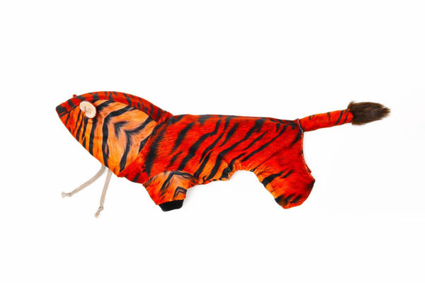 Picture of Tiger Costume