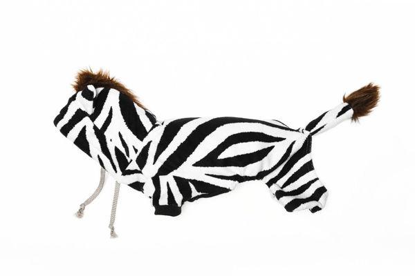 Picture of Zebra Costume