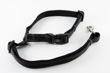 Picture of Seat Belt Leash - Black